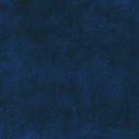 Velours de coton, coloris Encre (bleu marine) (x 50 cm)