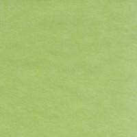 Polaire coloris vert, belle qualité