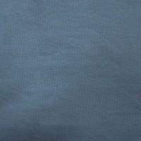 Jersey bleu gris, grande largeur( x 50 cm)