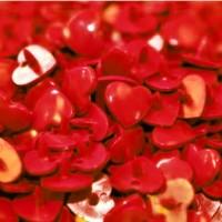 Pression Kam coeur, coloris Rouge  (lot de 5)