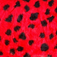 Tissu fausse fourrure coccinelle (x 50 cm)