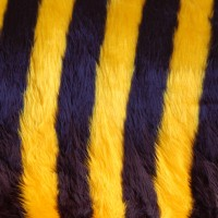 Tissu fausse fourrure bourdon (x 50 cm)