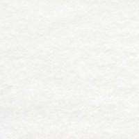 Velours de coton, coloris blanc (x 50 cm)